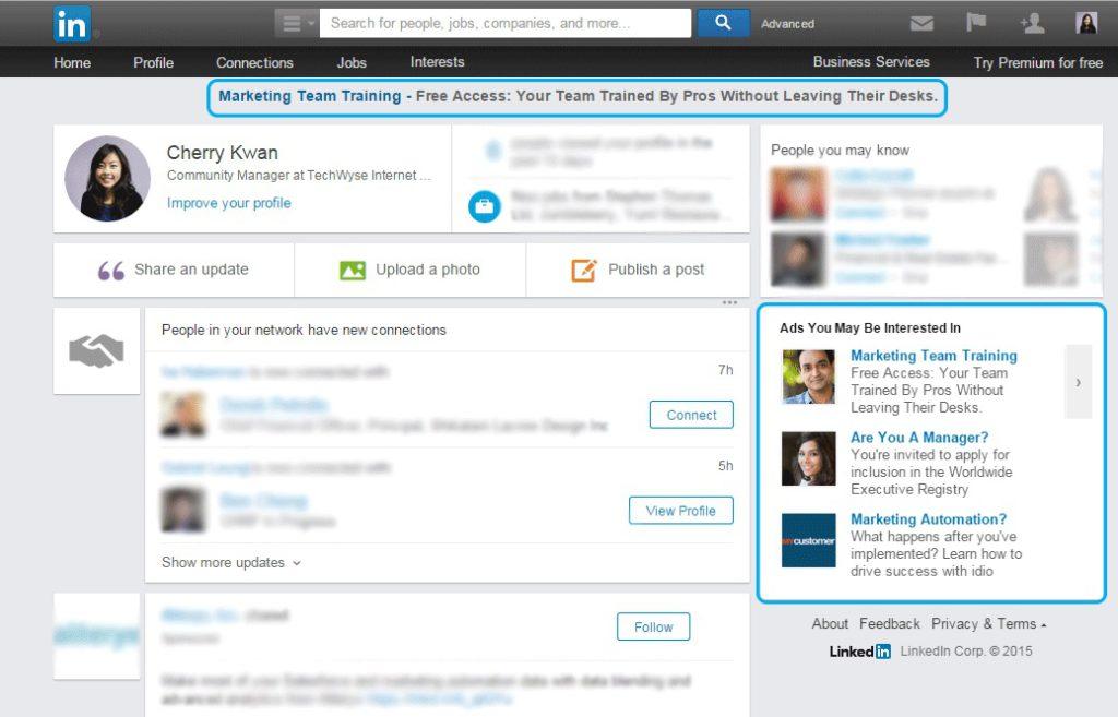 LinkedIn tekstadvertenties - LinkedIn ads - Lincelot